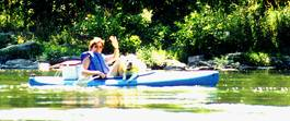 dog in kayak