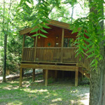 Wood Duck rental cabin