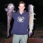 cat fishing at night