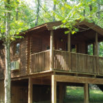 Osprey cabin at Shenandoah River Luray VA