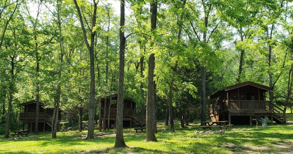 Wood Duck, Blue Heron and Ospry cabins